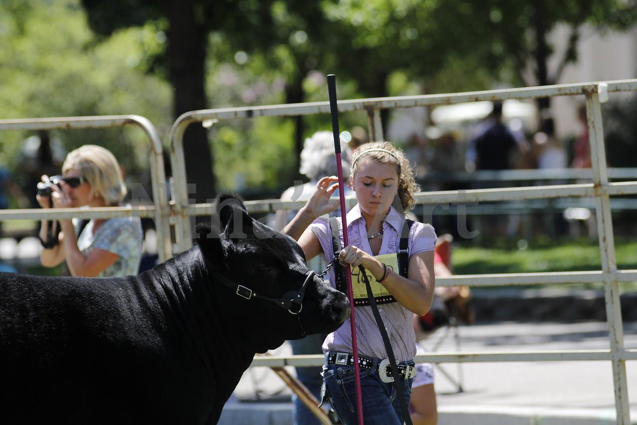 Taylor Weld County Fair 2011 (28)