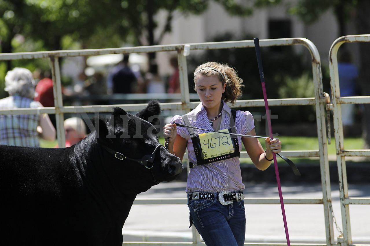 Taylor Weld County Fair 2011 (29)