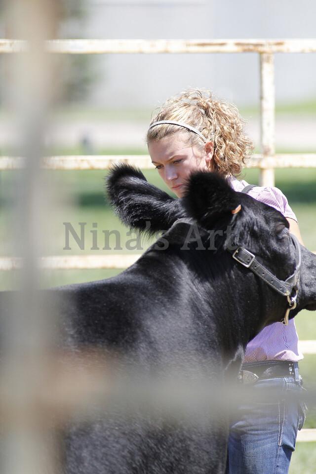 Taylor Weld County Fair 2011 (13)