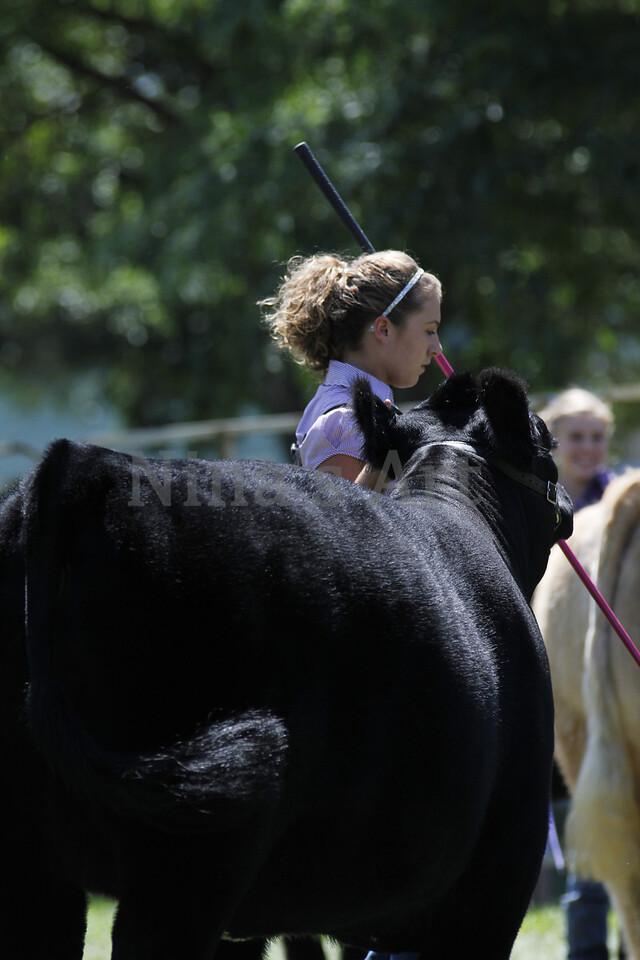 Taylor Weld County Fair 2011 (33)