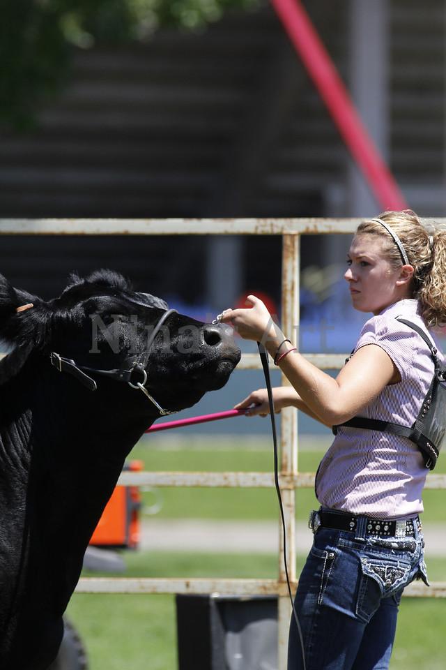 Taylor Weld County Fair 2011 (23)