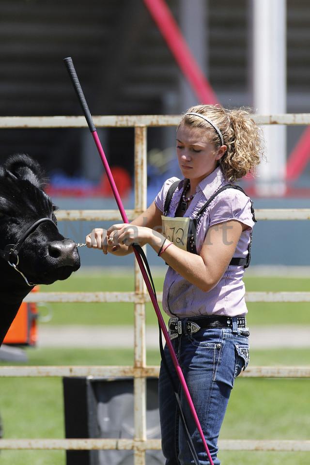 Taylor Weld County Fair 2011 (24)