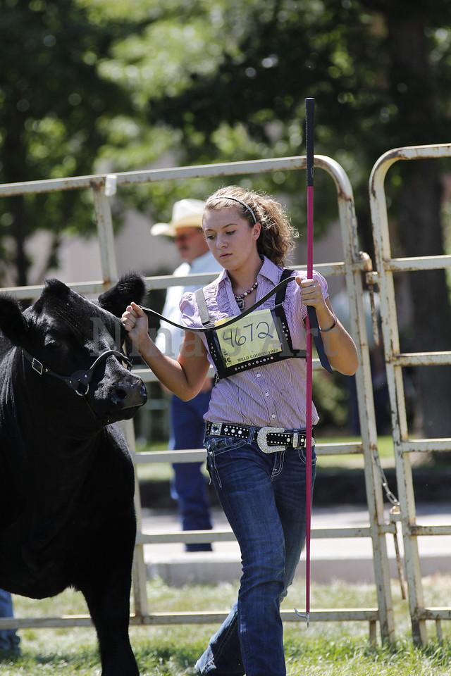 Taylor Weld County Fair 2011 (35)
