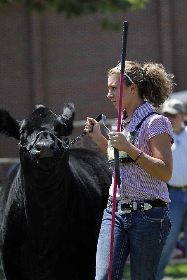 Taylor Weld County Fair 2011 (43)