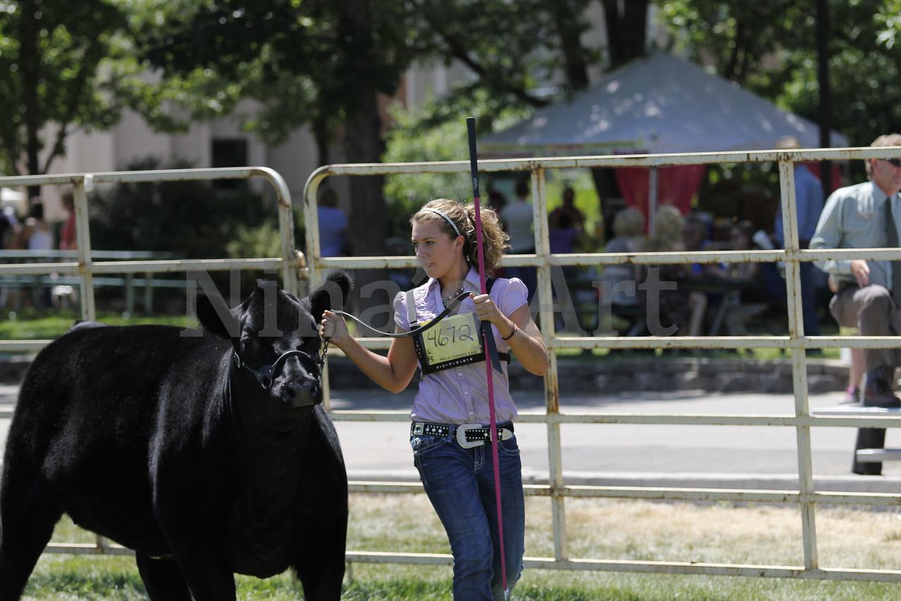 Taylor Weld County Fair 2011 (30)