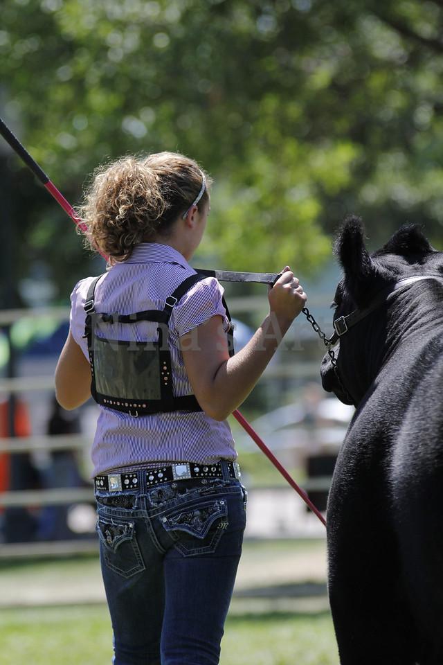 Taylor Weld County Fair 2011 (31)