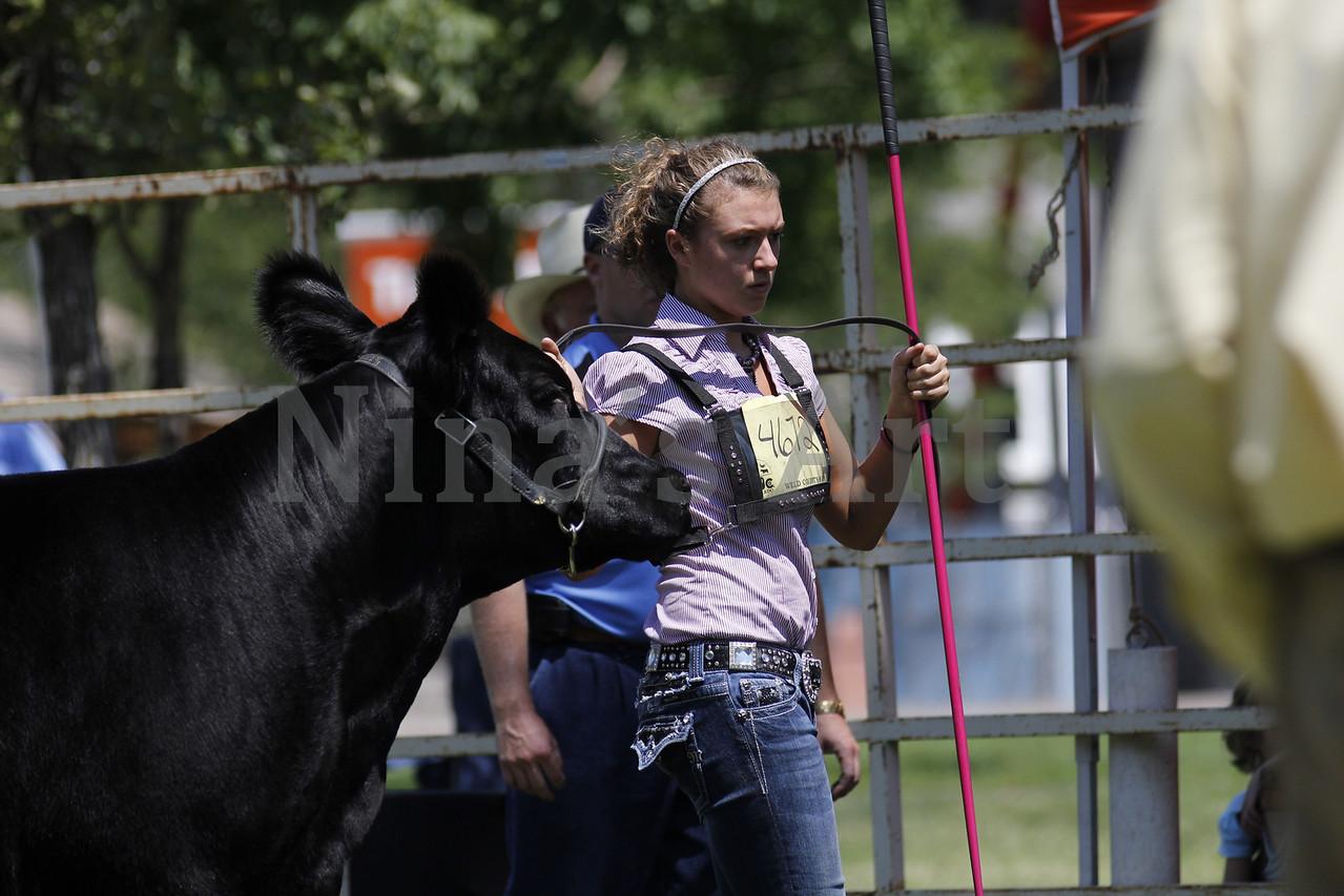 Taylor Weld County Fair 2011 (19)