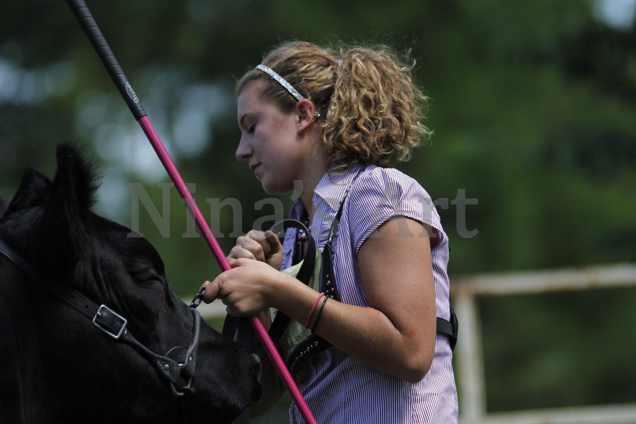 Taylor Weld County Fair 2011 (229)