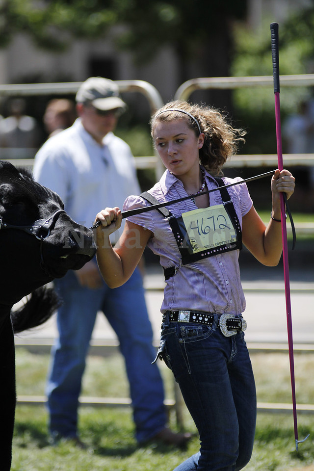 Taylor Weld County Fair 2011 (41)