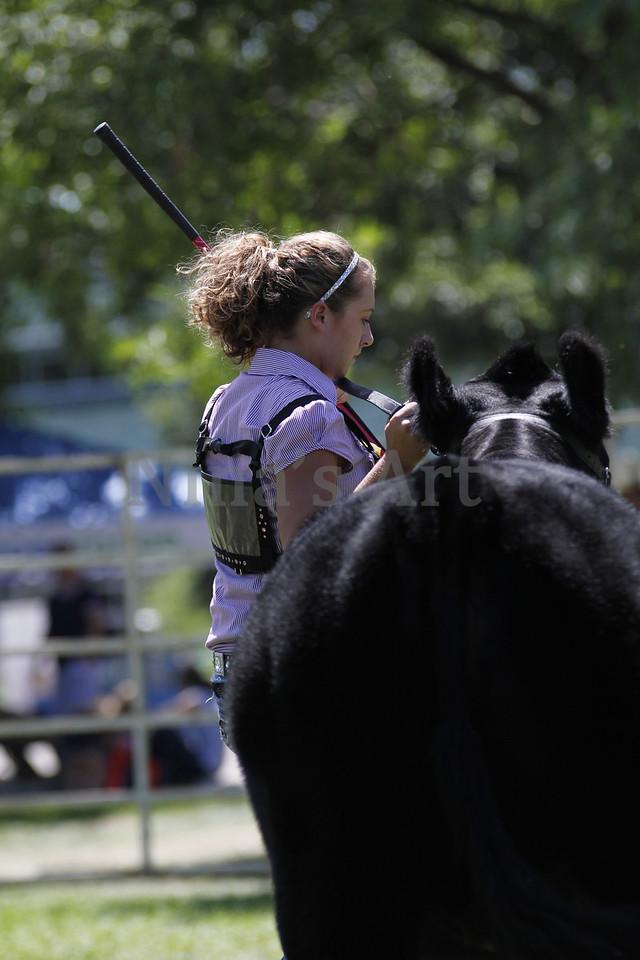 Taylor Weld County Fair 2011 (32)