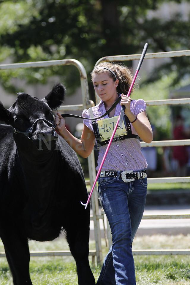 Taylor Weld County Fair 2011 (36)
