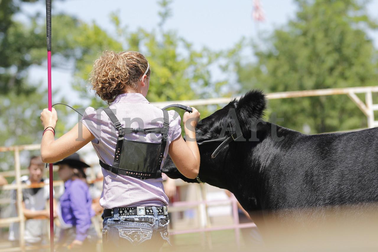 Taylor Weld County Fair 2011 (27)