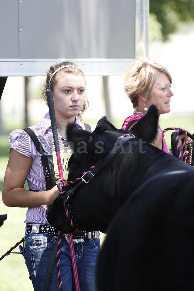 Taylor Weld County Fair 2011 (11)