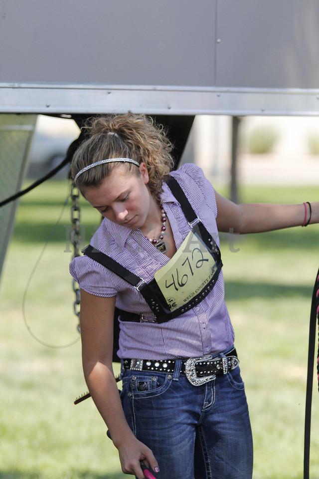 Taylor Weld County Fair 2011 (12)