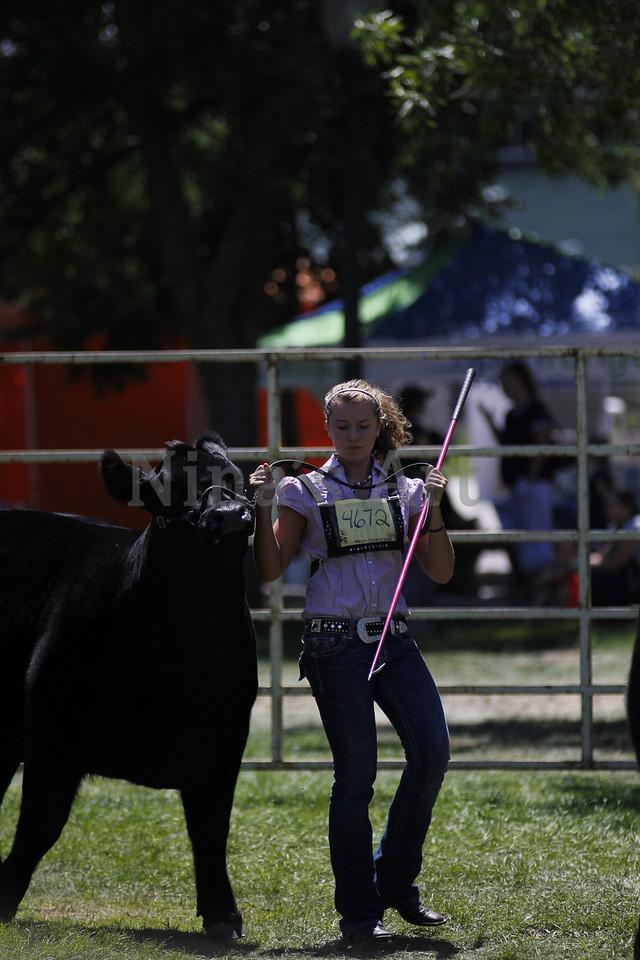 Taylor Weld County Fair 2011 (40)