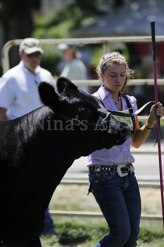 Taylor Weld County Fair 2011 (42)