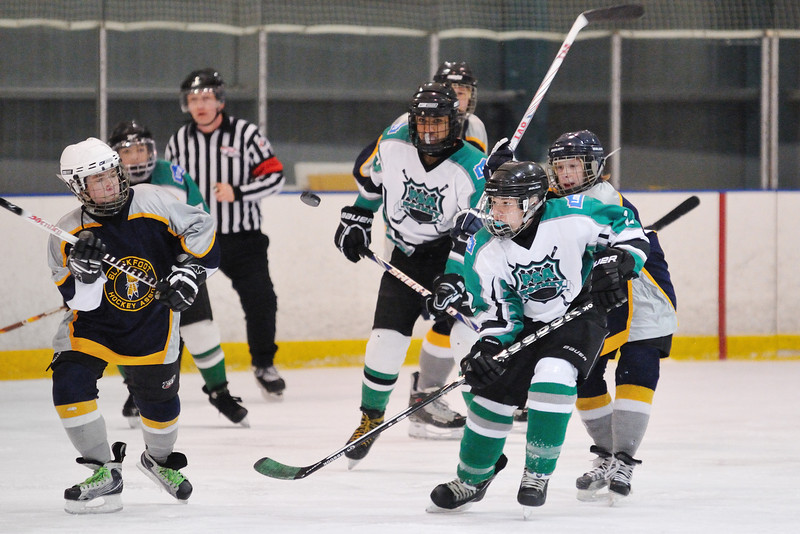 everyones looking at the puck.. can you see it ?