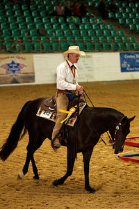 Amberg Germany German Open Horse Show Radiopoppers  JR Howell 1812 37th Street Ct Moline, IL 61265 JRHowell@me.com
