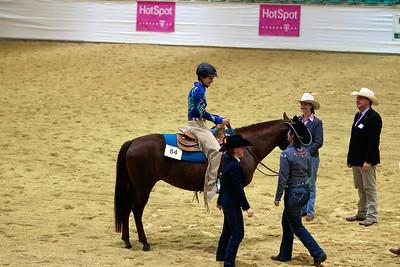 Amberg Germany German Open Horse Show  JR Howell 1812 37th Street Ct Moline, IL 61265 JRHowell@me.com