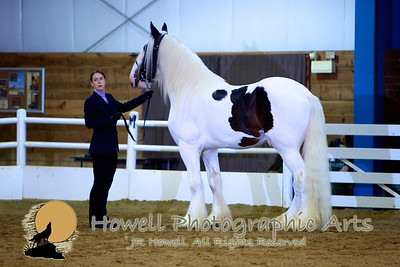 GCDHA Royal Jubilee Horse Show  ©2011 JR Howell, All Rights Reserved  JRHowell@me.com
