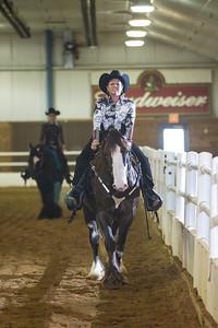 Kirkwood Gypsy Horse Show  JR Howell 1812 37th Street Ct Moline, IL 61265 JRHowell@me.com