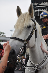 Erie County Mounted Police 004