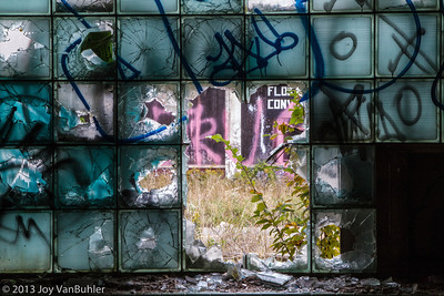 2012 - Packard Plant Photowalk