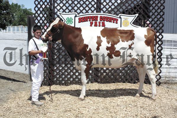 2012 Benton  Co. Fair - Dairy - Lamb
