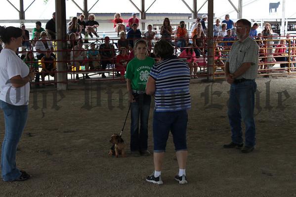 2012 Benton Co. Fair - Dog Show