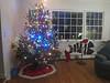 2012 Christmas (11)