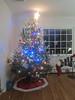 2012 Christmas (12)