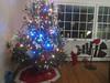 2012 Christmas (13)