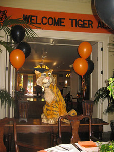 Papier mache tiger, banner and balloons