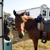 20121110-trail-ride-challenge-015