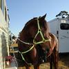 20121110-trail-ride-challenge-023