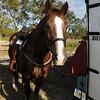 20121110-trail-ride-challenge-021