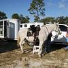 20121110-trail-ride-challenge-012