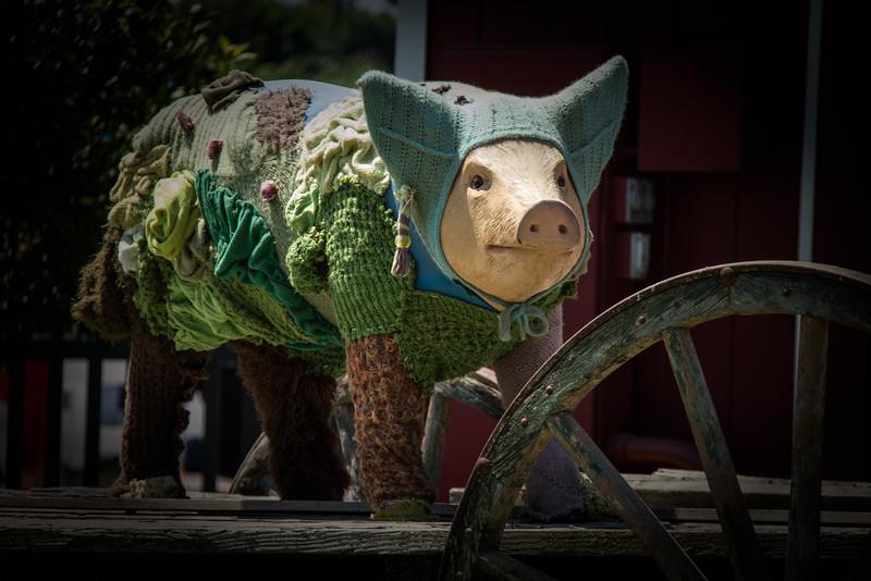 Yarn Bombed Pig