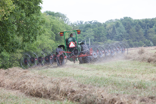 The farmer raking the campground hay into rows for the bailing machine. (Howard Pitkow/for Newsworks)