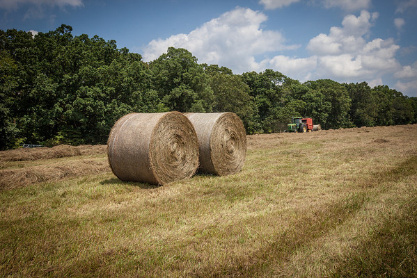 Hay from the campground bailed and ready for the livestock. (Howard Pitkow/for Newsworks)