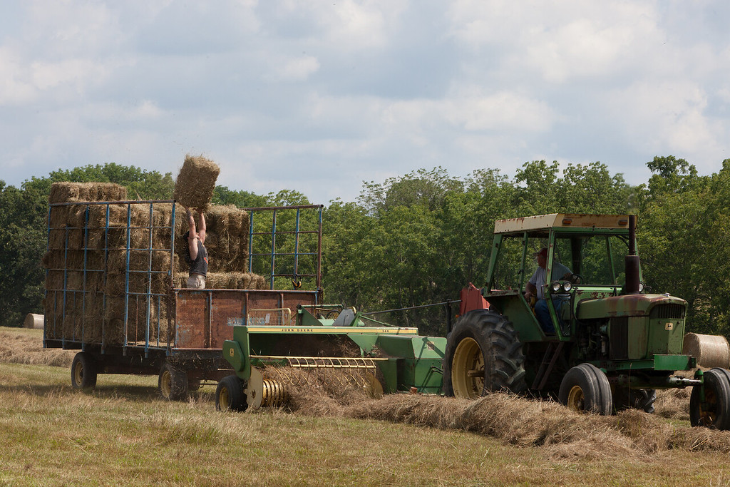 The farmers making square bails of hay and stacking them in the caged trailer. (Howard Pitkow/for Newsworks)
