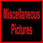 A Misc-1105