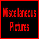 A R4S Misc-11110