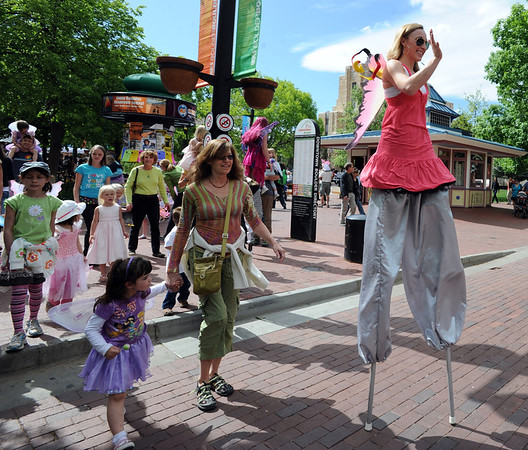 "Frequent Flyers were in the air on stilts during the parade.<br /> Downtown Boulder held the popular Tulip Fairy and Elf Parade on the Pearl Street Mall on Saturday.<br /> For  a video and more photos of the event, go to  <a href=""http://www.dailycamera.com"">http://www.dailycamera.com</a><br /> Cliff Grassmick / April 28, 2012"