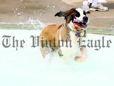 2012 VPRD Doggie Dip