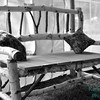 bw birch bench