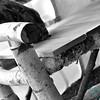 bw birch bench detail