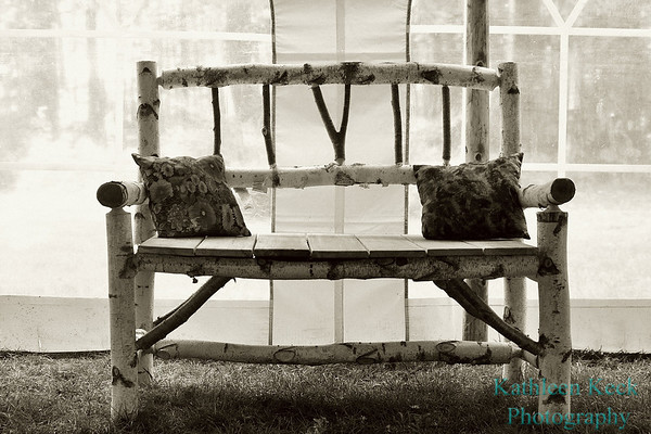 sepia birch bench 2