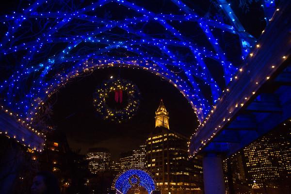 2012-11 | CCP Trellis Lighting 113