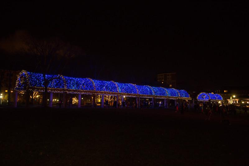 2012-11 | CCP Trellis Lighting 66
